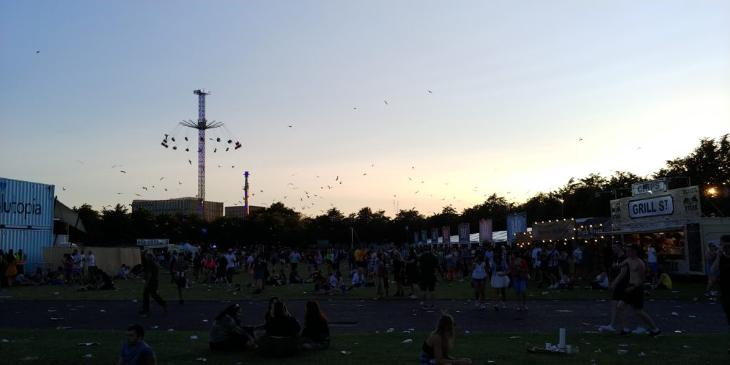 Seagulls picking on the scraps at TRNSMT 2019